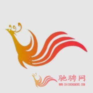 盟擎直播:贵州丹寨苗族传统文化旅游插图(4)